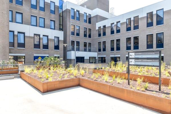 Brinkside Apartments tuin
